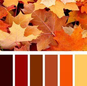 fall colors palette