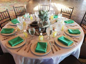 table cactus