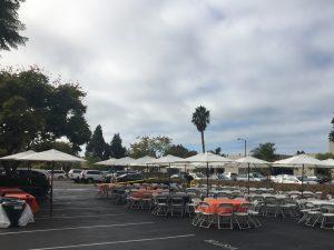 white umbrella rentals