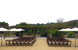 imagine park wedding
